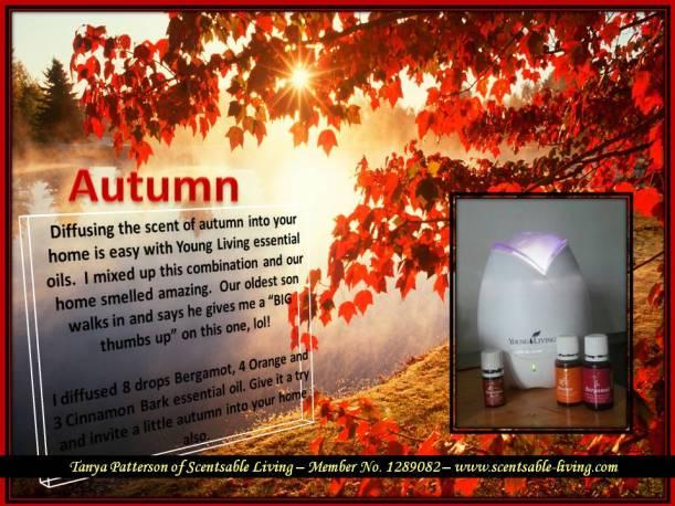 Autumn Combo