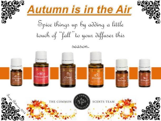 autumn common sense