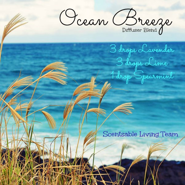 ocean_breeze_by_0hmy-d45re5e