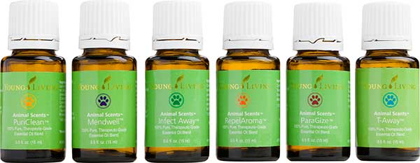 Young-Living-Animal-Scents-essential-oils