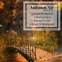 Autumn Air (1)