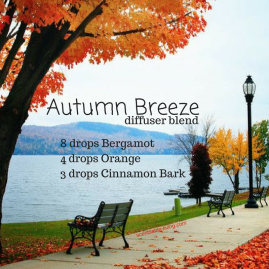 Autumn Breeze (2)