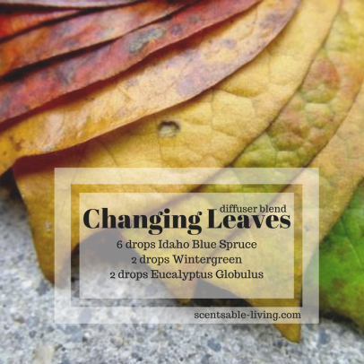Changing Leaves (new)