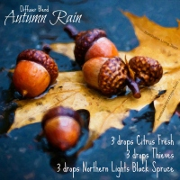 Nature___Seasons___Autumn_Acorns_and_oak_leaves_in_the_autumn_rain_100085_