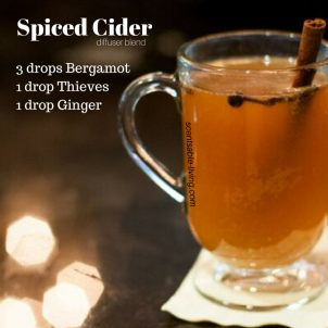 Spiced Cider (new)