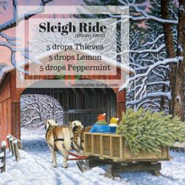 15. Sleigh Ride