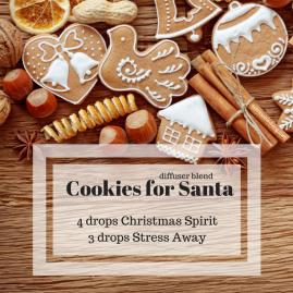 17. Cookies for Santa