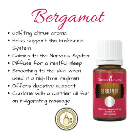 Bergamot (2)