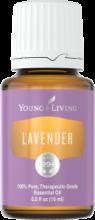 lavender15-129x300