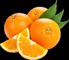 orange_PNG791.png