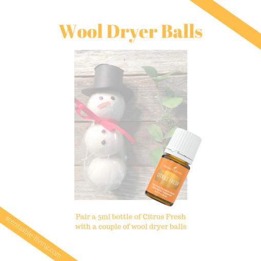 Santa Dryer Balls